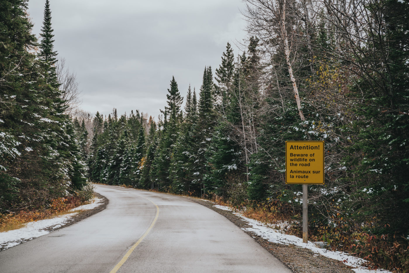 Road leading to Pukaskwa National Park