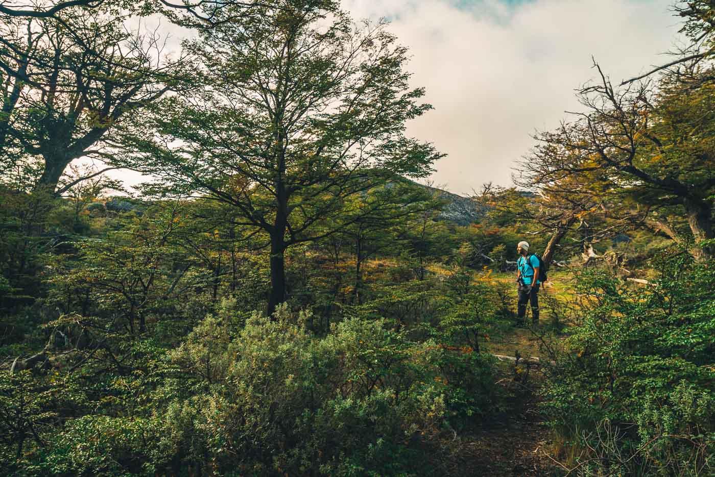 Max en route to the top of Cerro Queso