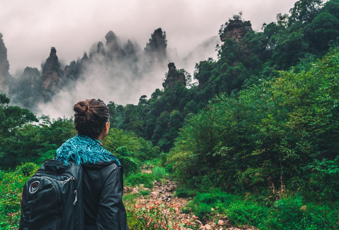 Guide to Visiting Zhangjiajie National Forest Park