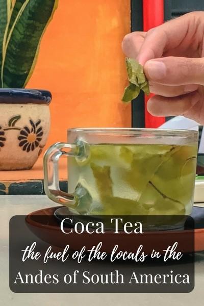 Coca Tea (Mate de Coca), the fuel of the locals in the Andes of South America