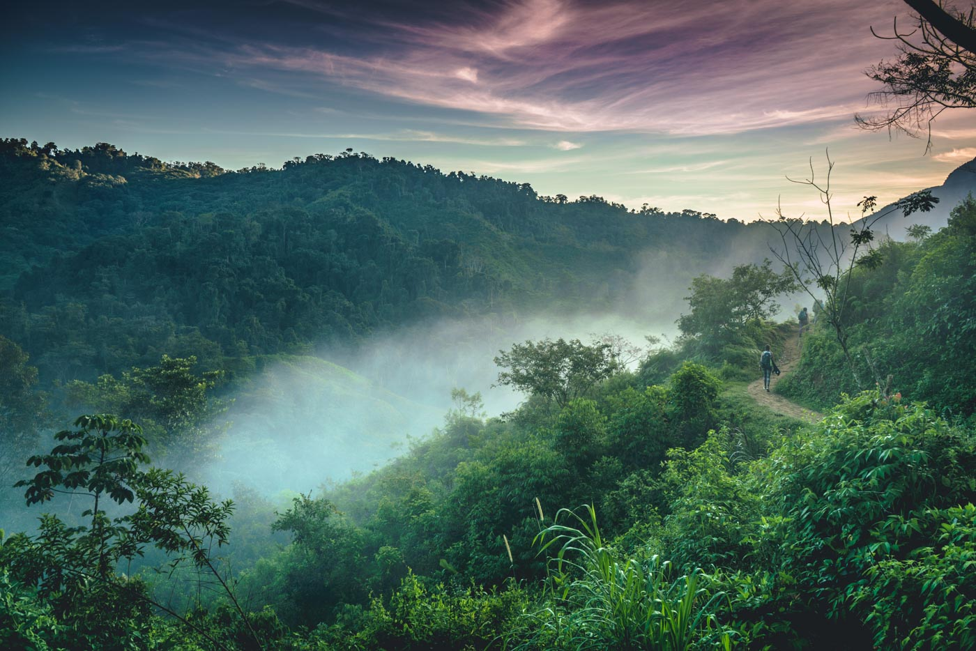 Early morning light over the jungle on Lost City trek