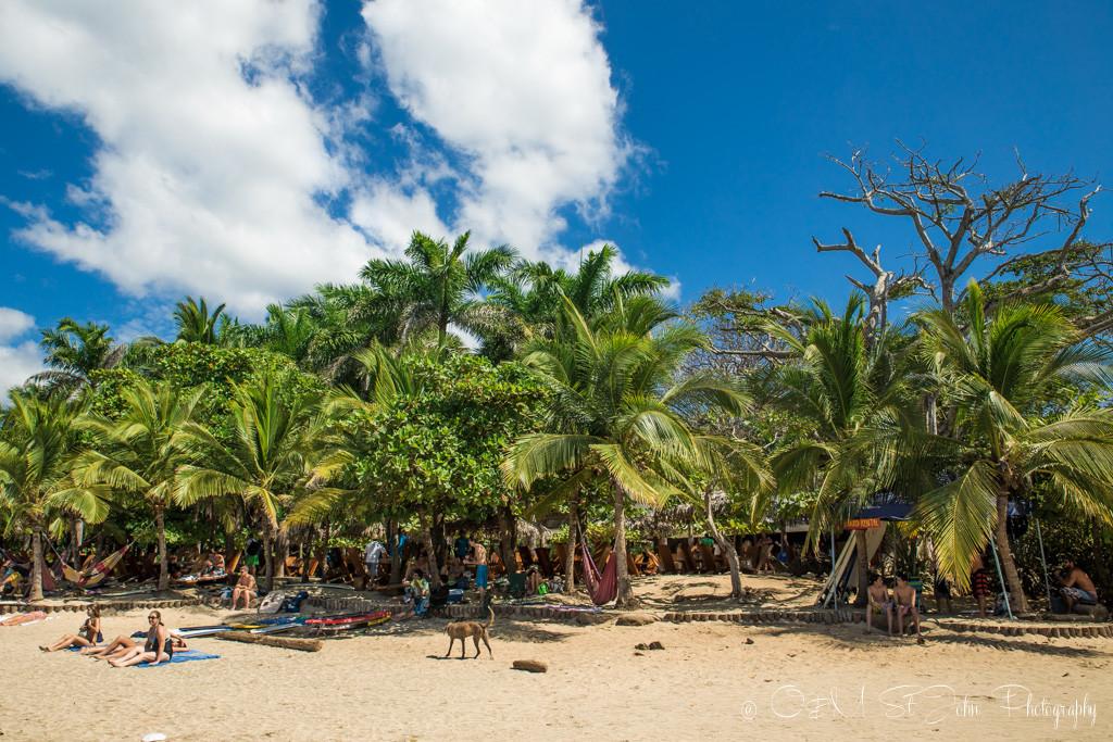 Costa Rica Travel Budget: Playa Avellanas, Gaanacaste