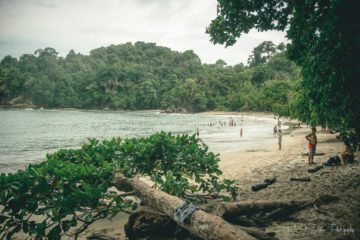 The Ultimate Guide to Visiting Manuel Antonio, Costa Rica