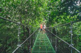 Best Costa Rica Hiking Trails