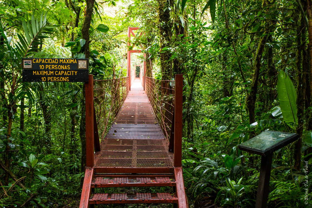 Costa Rica Itinerary: Monteverde Cloud Forest Reserve, Costa Rica