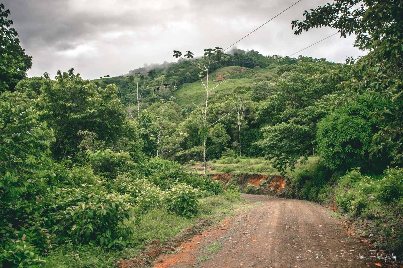 The road to the Nauyaca Waterfalls