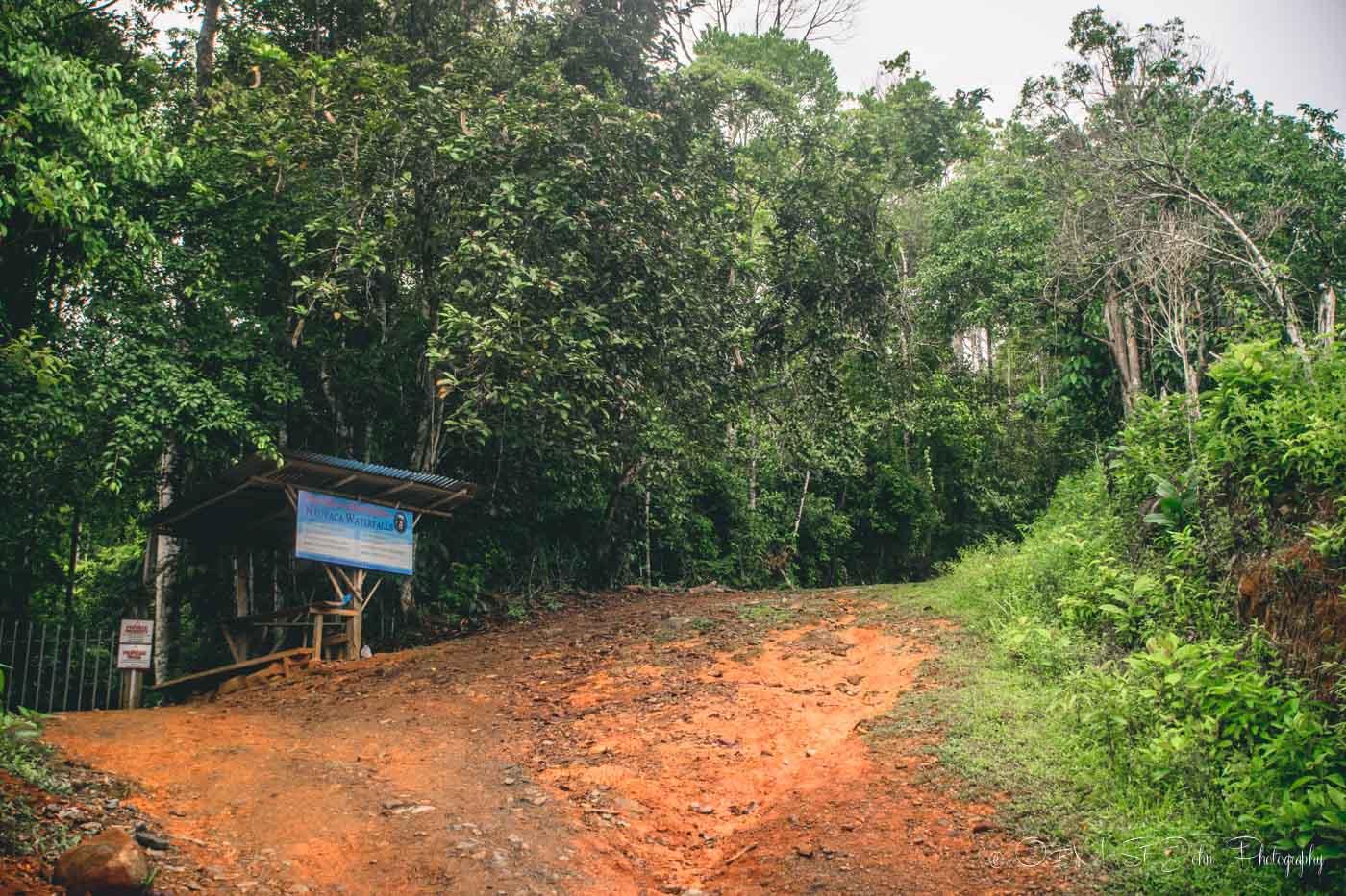 Costa Rica Nauyaca Waterfalls-9080