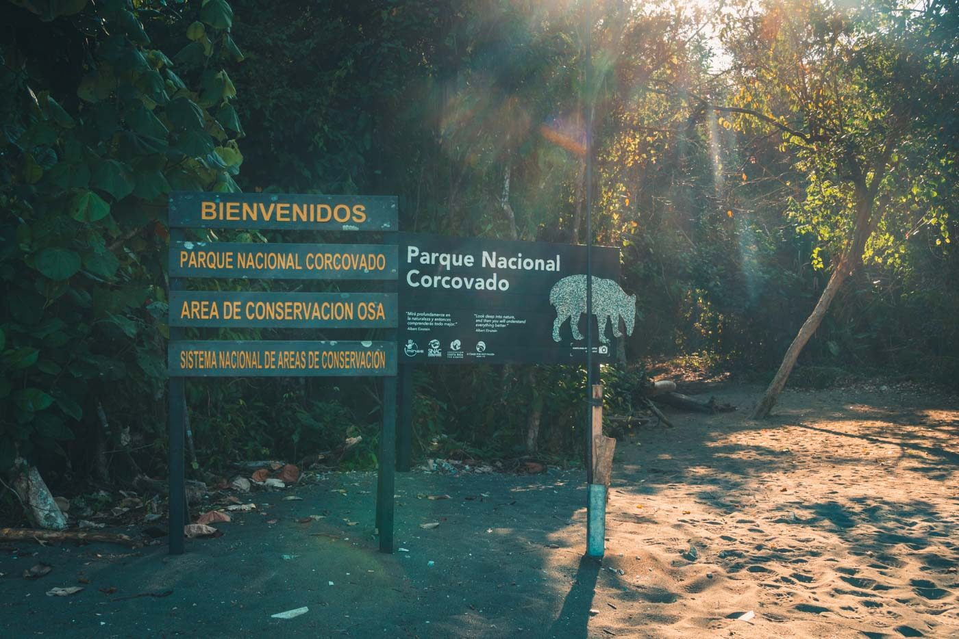 Corcovado National Park, exotic animals in natural habitat