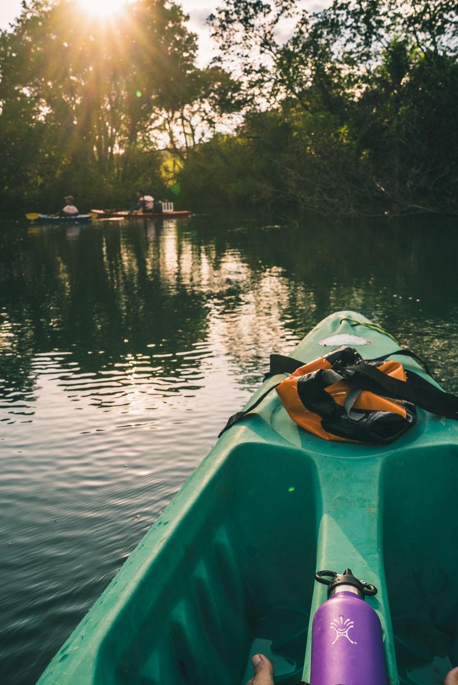 Puerto Jimenez Costa Rica: kayaking
