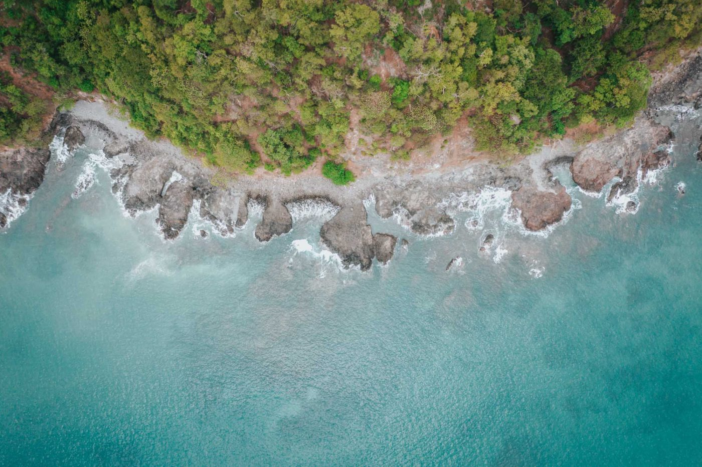 Lush green shores of Playa Flamingo in the green season.