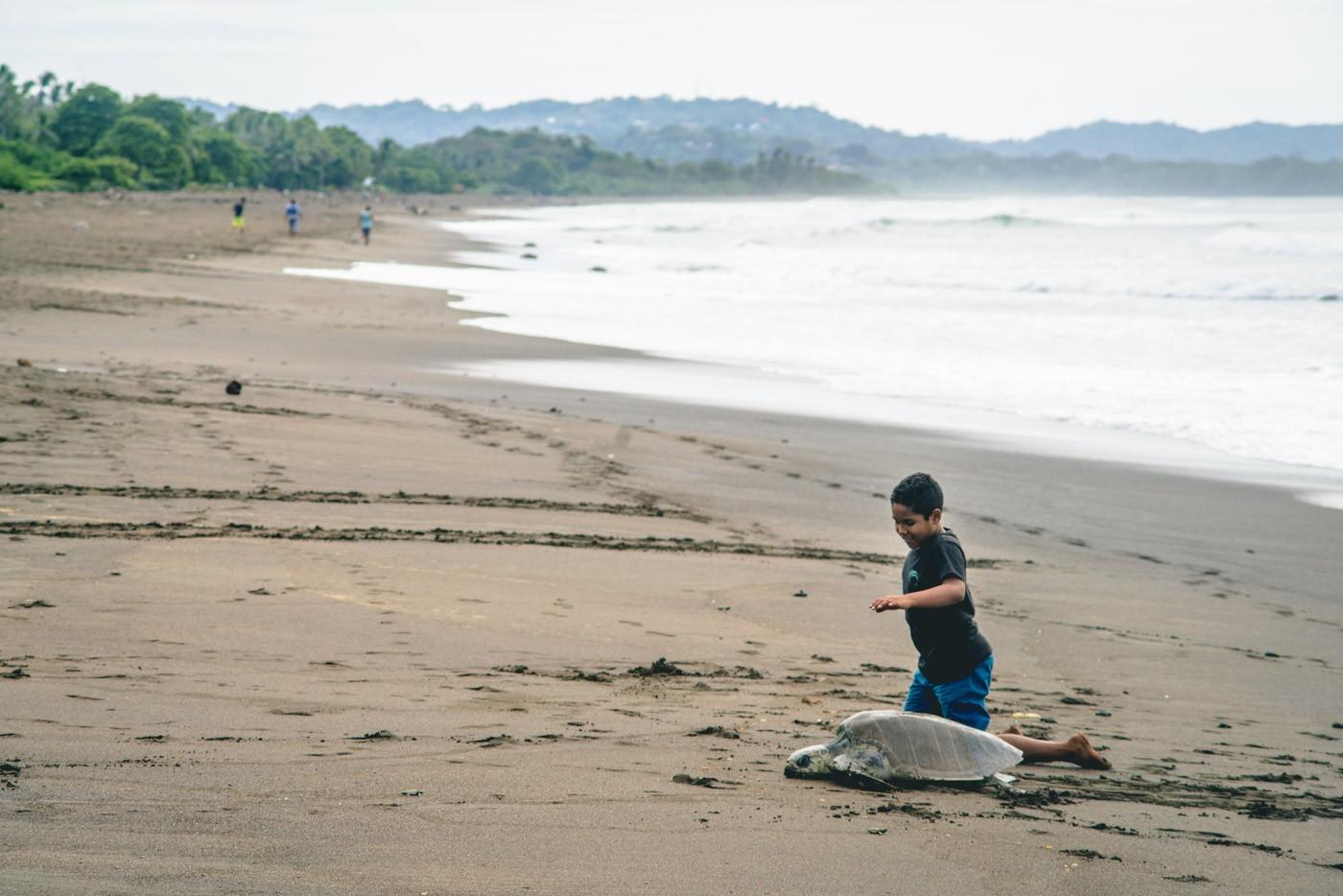 Costa Rica Playa Ostional-4470