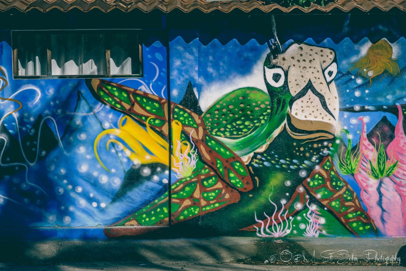 Wall art in Samara Costa Rica