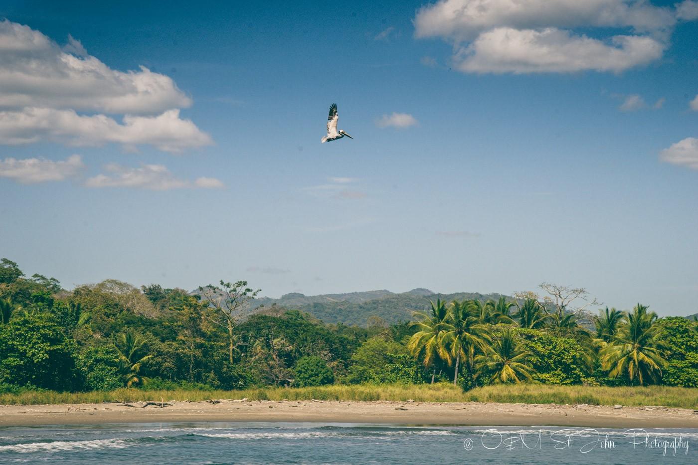 Secluded beach at Playa Buena Vista Samara Costa Rica