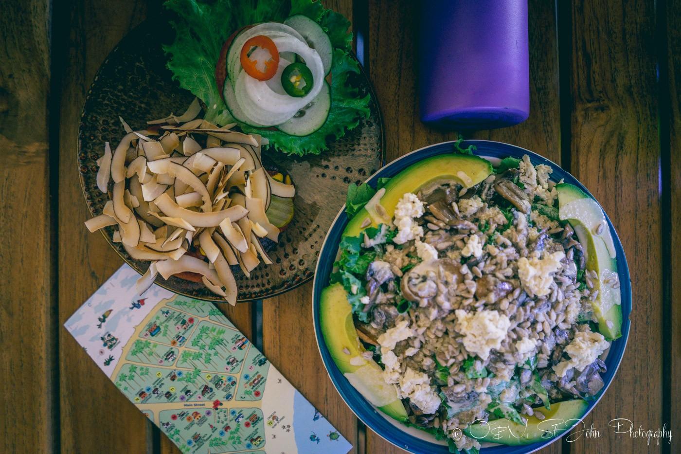 Vegetarian burger and yogi superfoods bowl at Love Burger. Samara Costa Rica
