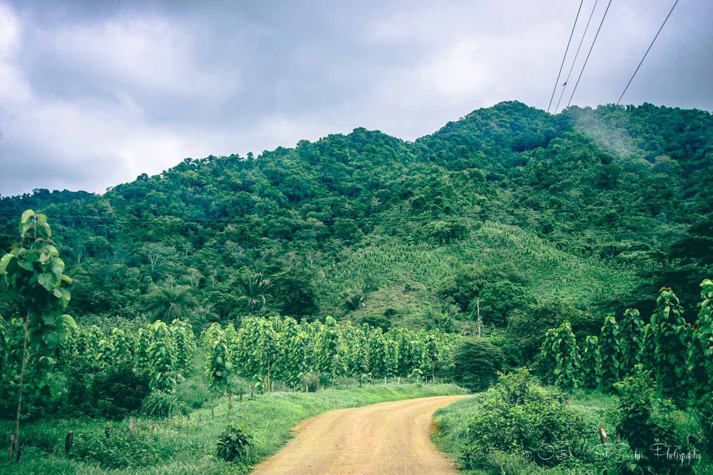 Road to Mal Pais, Nicoya Peninsula. Costa Rica