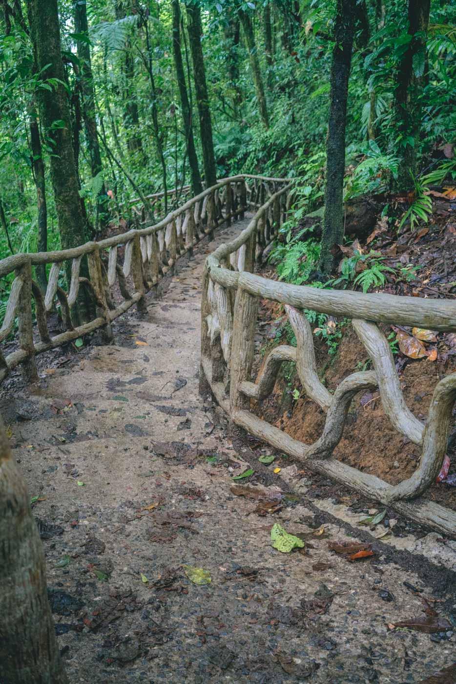 Arenal Costa Rica: Tenorio National Park