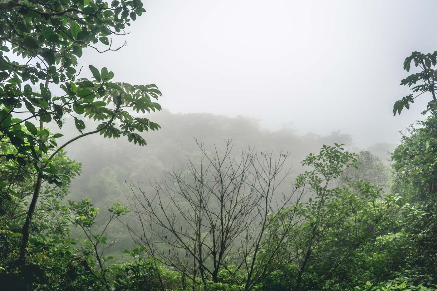 The lookout (mirador) at the Tenorio National Park. Best viewed in clear weather