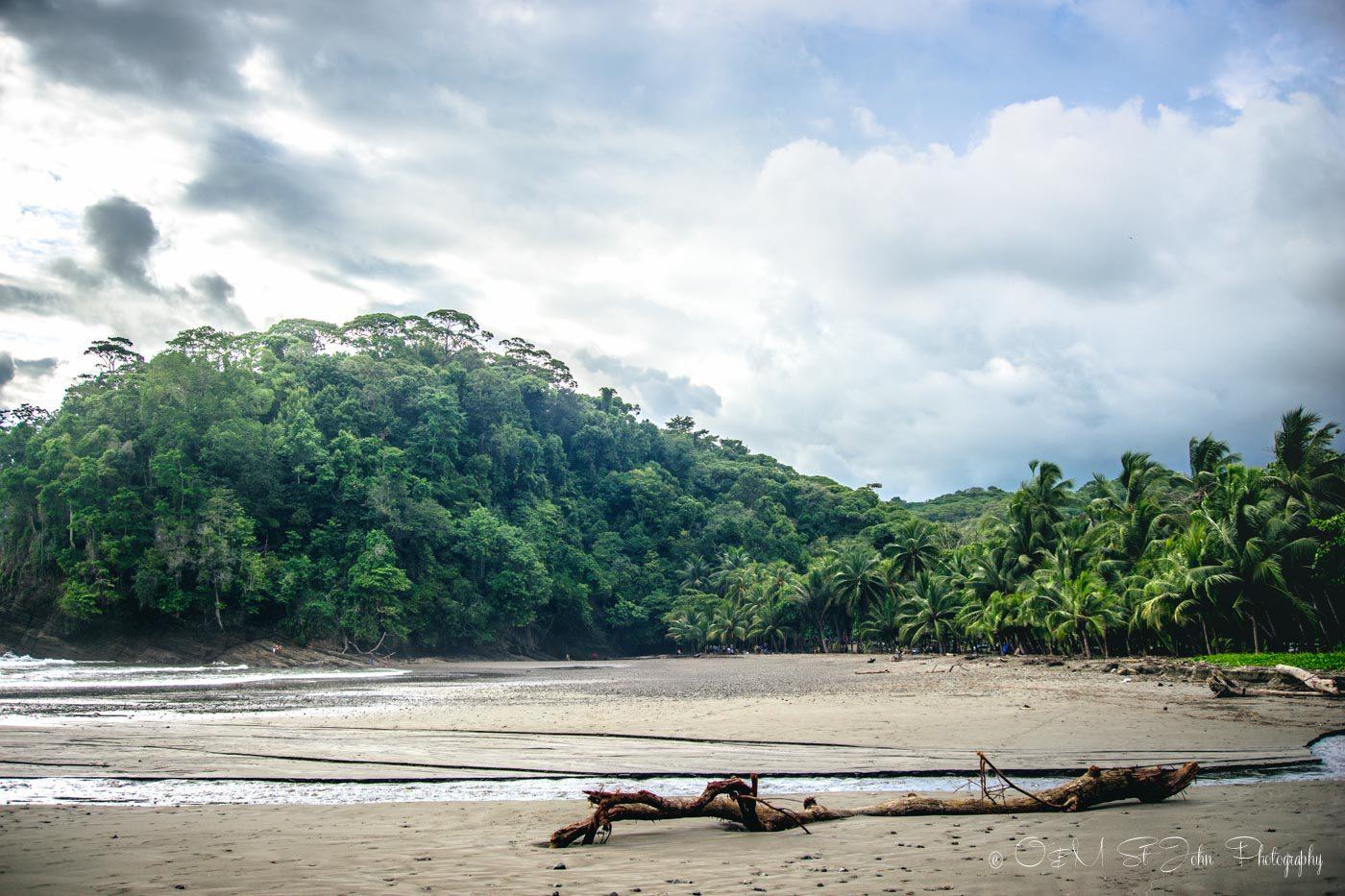 Things to do in Punta Uvita, Playa Ventanas, Costa Rica
