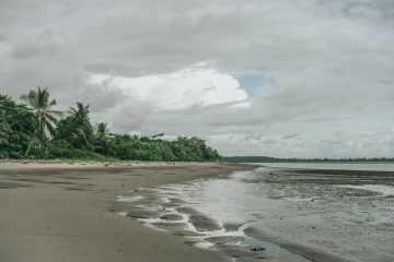 Experience Living Like a Local by visiting Ojochal, Costa Rica