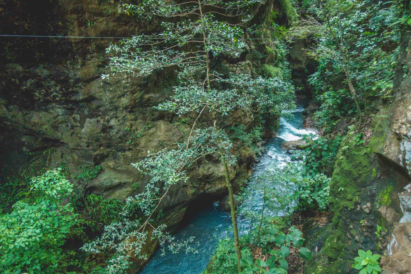 Guide to Ecotourism in Costa Rica