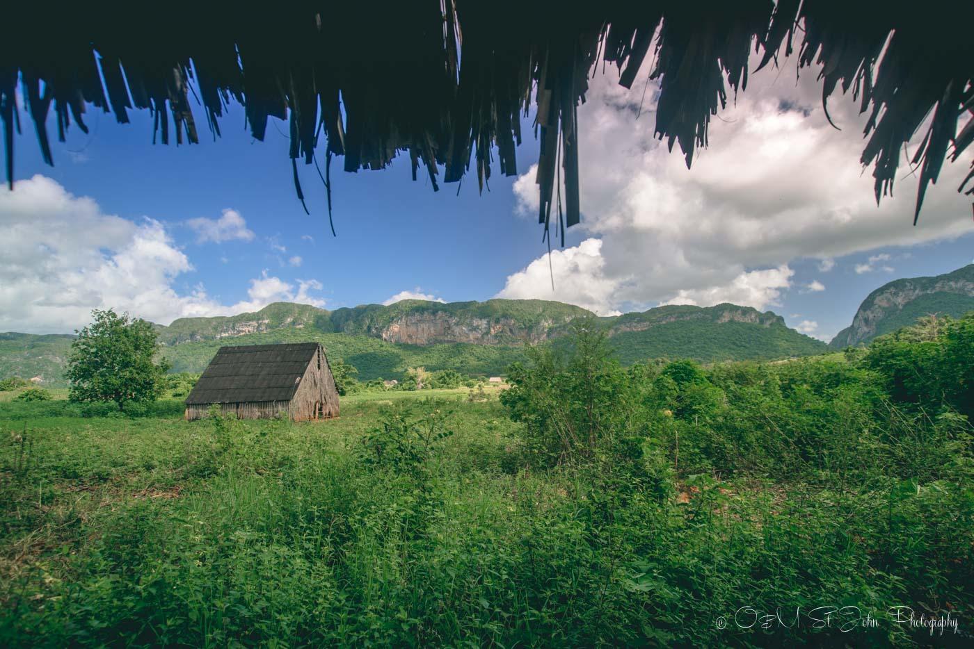 Cuba Vinales-1211