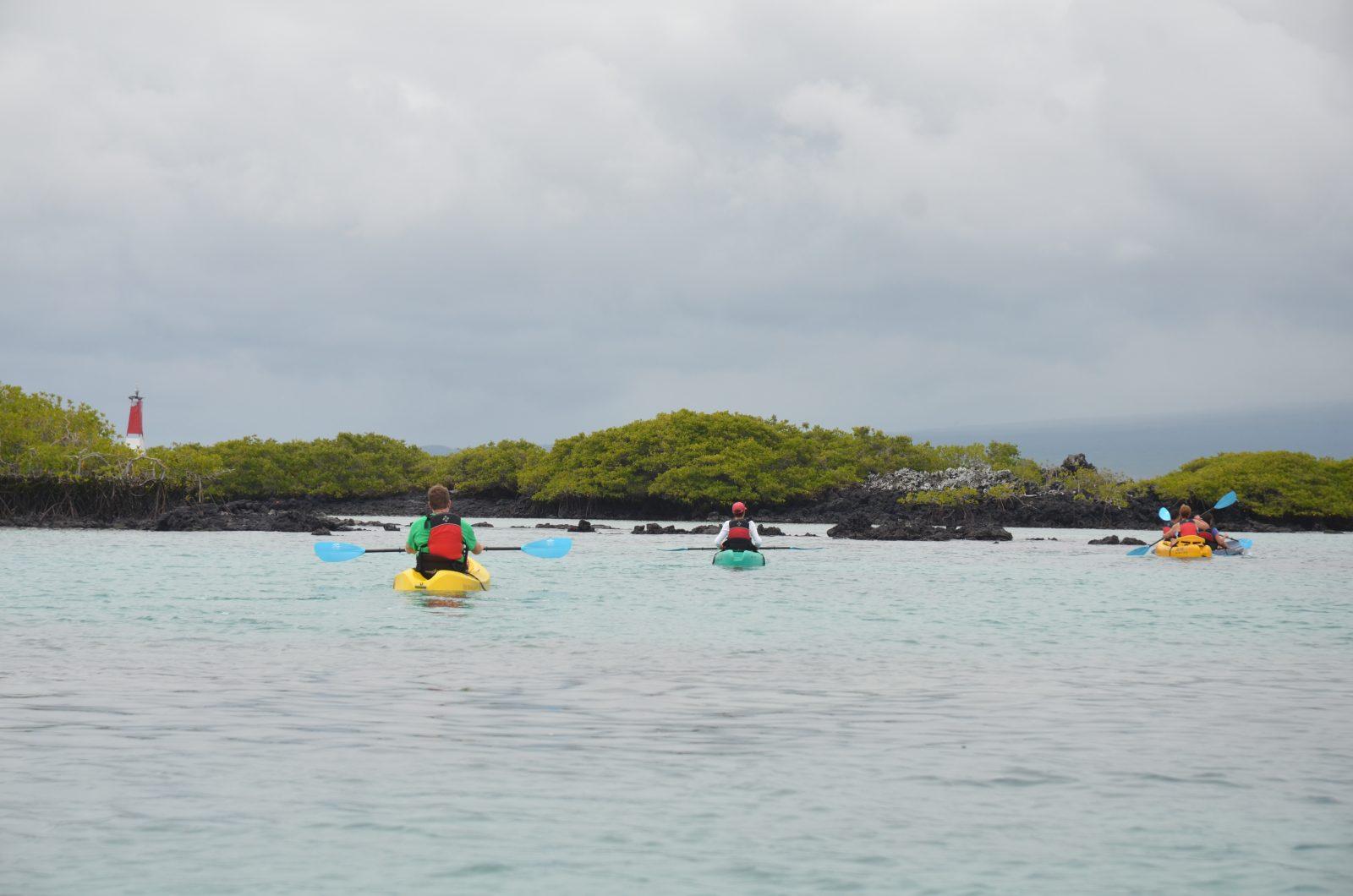 Kayaking on Isabela Island. Photo courtesy of Galakiwi