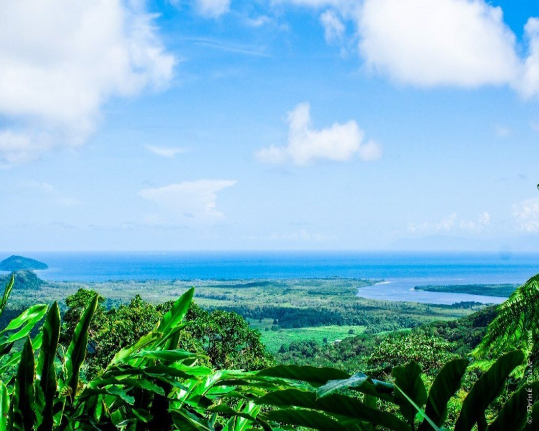 Things to do in Cape Tribulation for Every Responsible Traveler