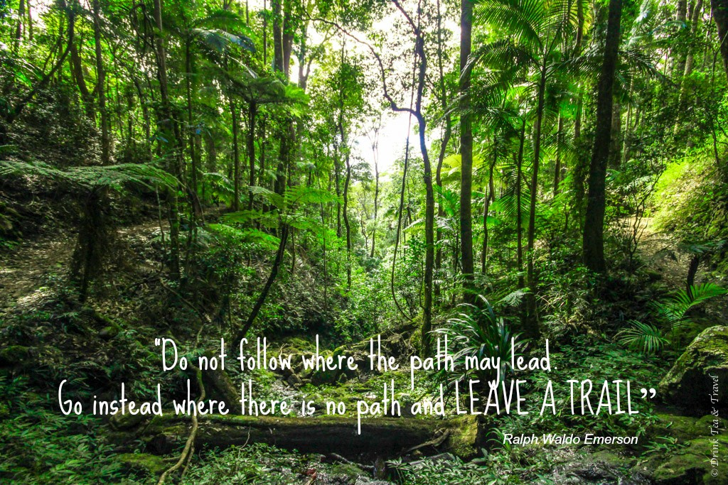 """Inspirational Travel Quotes:""""Do not follow where the path may lead. Go instead where there is no path and leave a trail"""" – Ralph Waldo Emerson"""