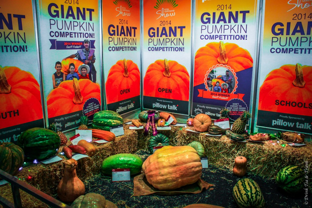 Giant Pumpkin Competition at the Royal Queensland Show