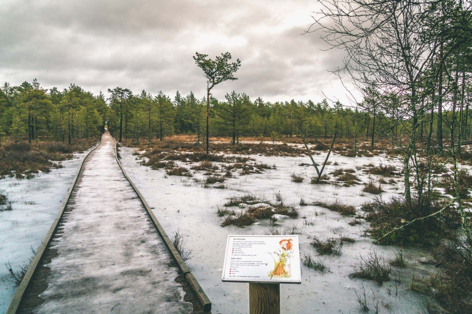 Things to do in Tallinn: Lahemaa National Park