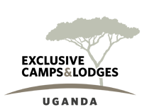 Exclusive-Camps-Logo-200-wide