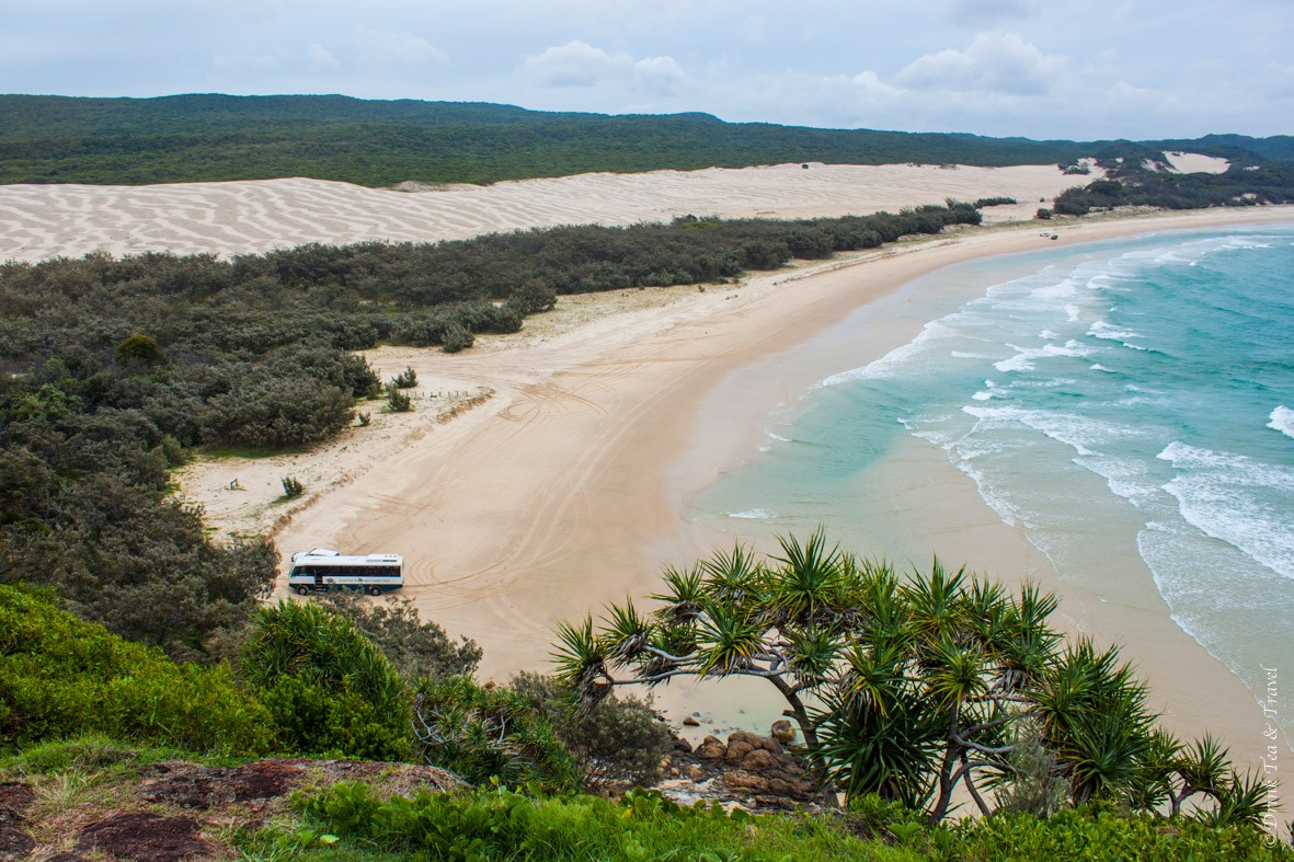 Camping on Fraser Island: View from the top of Indian Head, Fraser Island
