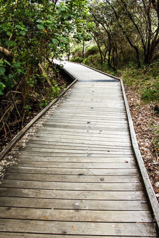 Fraser Island Tour: Board walk at Eli Creek