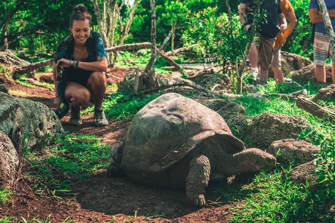 ethical wildlife experiences