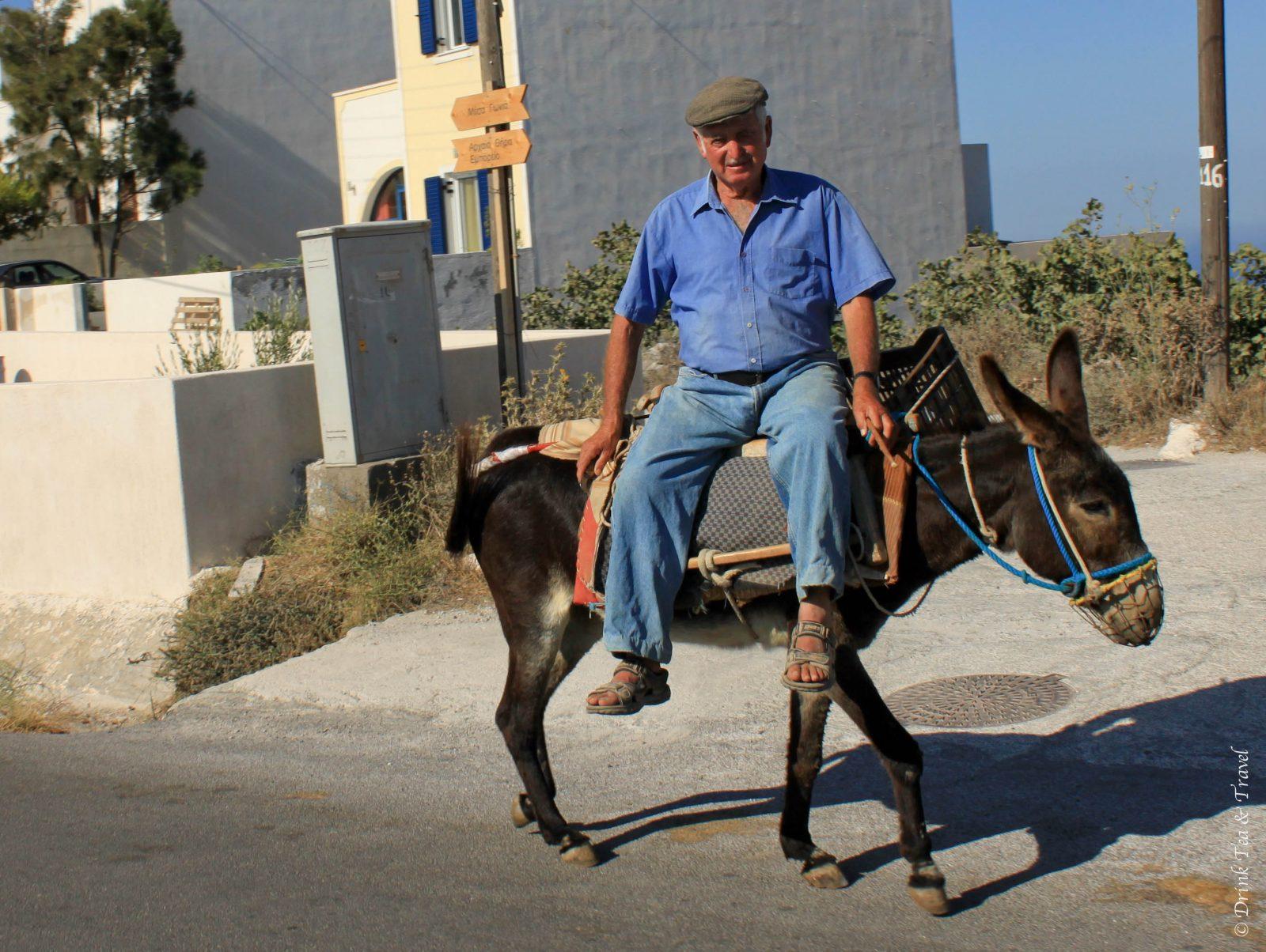 Riding a donkey in Santorini in Greece