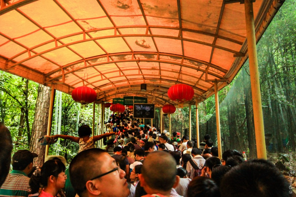 Crowds waiting in line for the cable car to the top of Huangshan