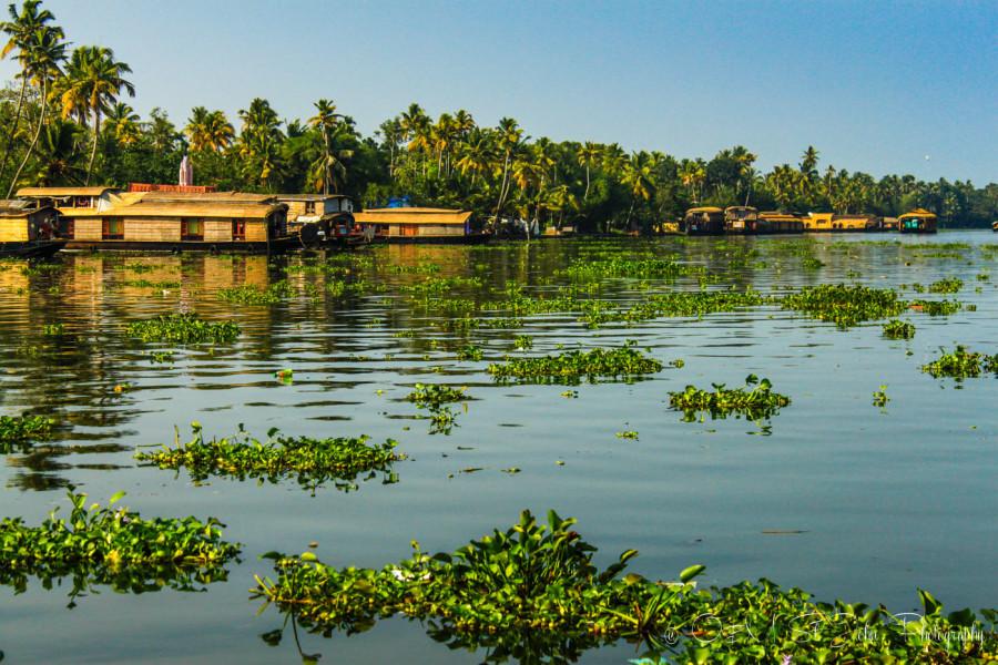 Photo Essay: Sailing Through Kerala Backwaters in India