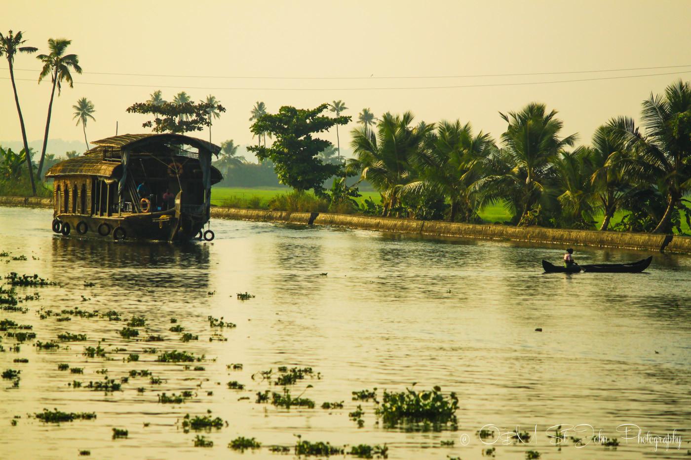 Kettuvallams (house boat) in Kerala Backwaters at sunset, India