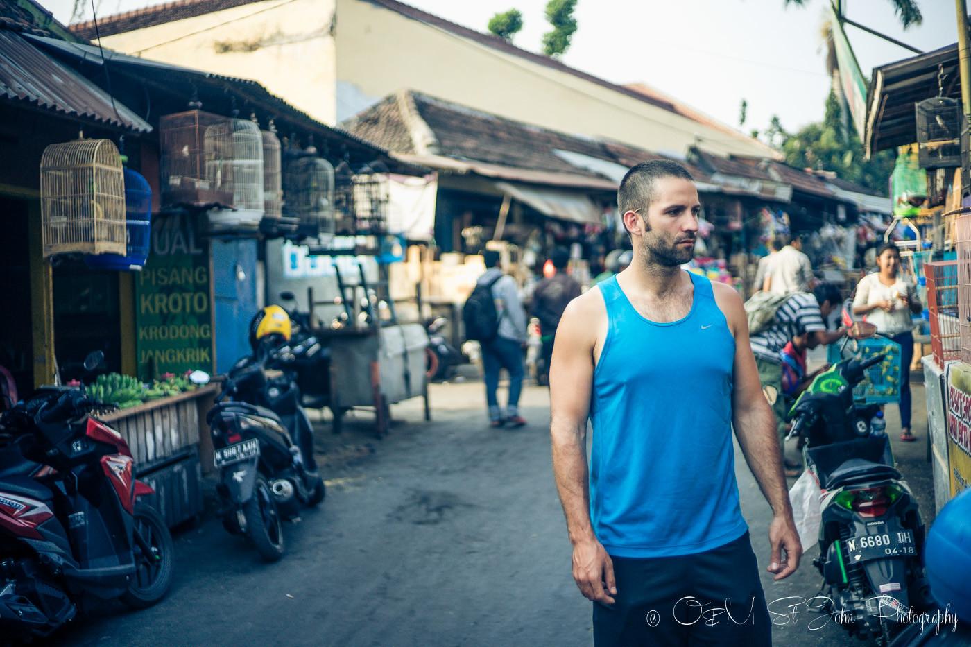 Max at the Malang Bird Market, East Java, Indonesia