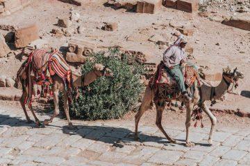 Ecotourism in Jordan: How to Plan a Responsible Trip to Jordan