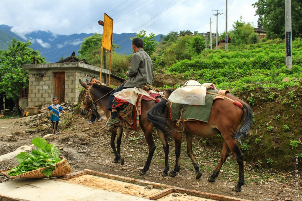 Locals going about their day along the hike through Tiger Leaping Gorge