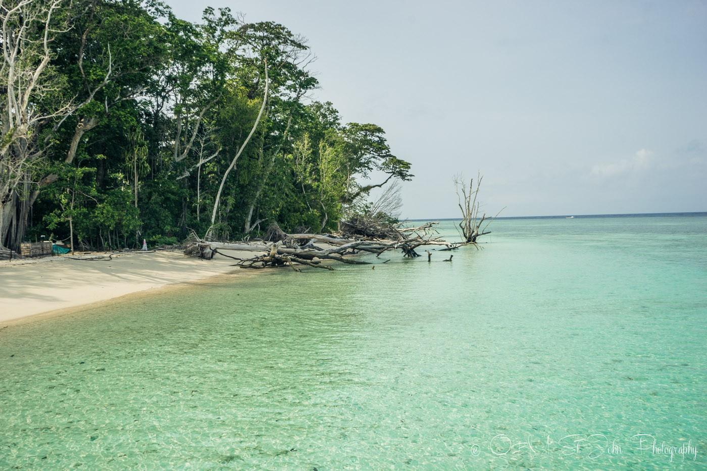 Crystal clear waters around Sipadan Island. Sabah. Malaysian Borneo