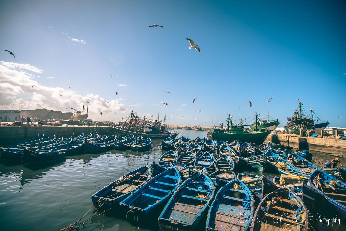 Essaouira fishing port, Morocco