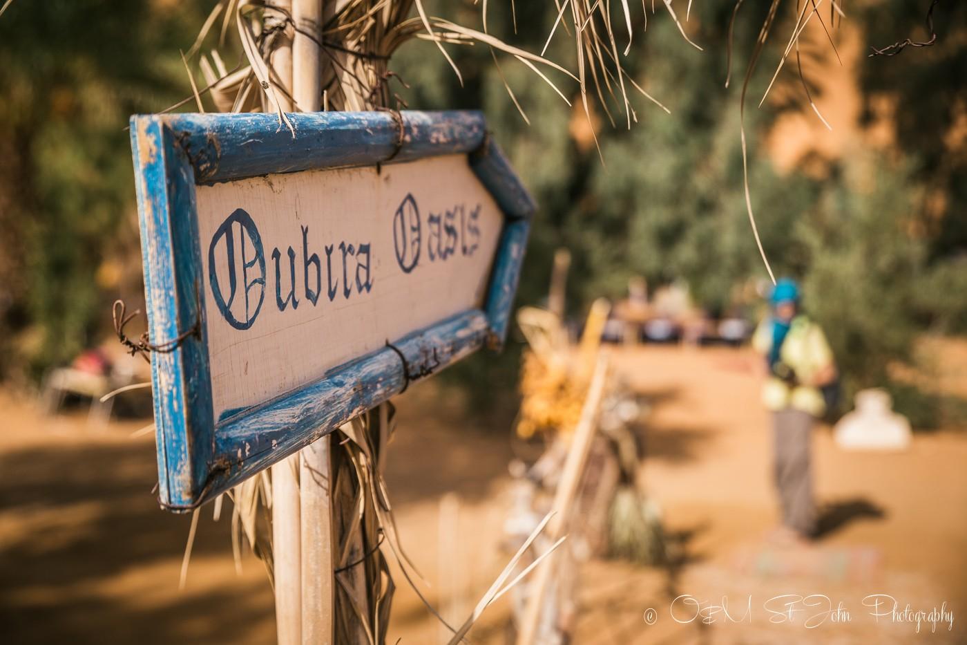 Oubira Oasis, Erg Chebbi, Sahara Desert. Morocco