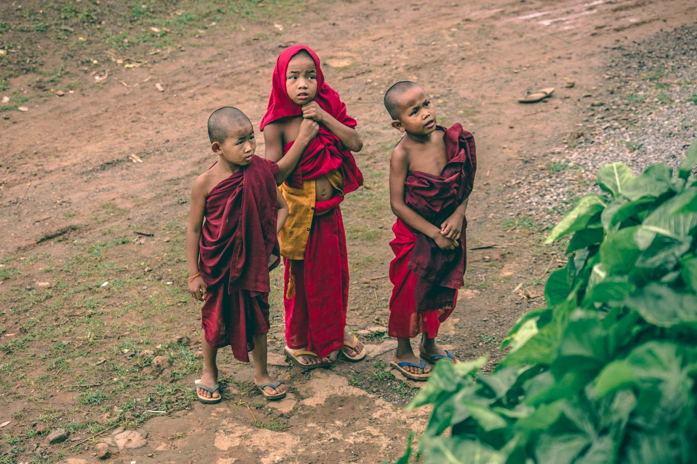 Young monks walking around a remote village in the Shan state. Myanmar