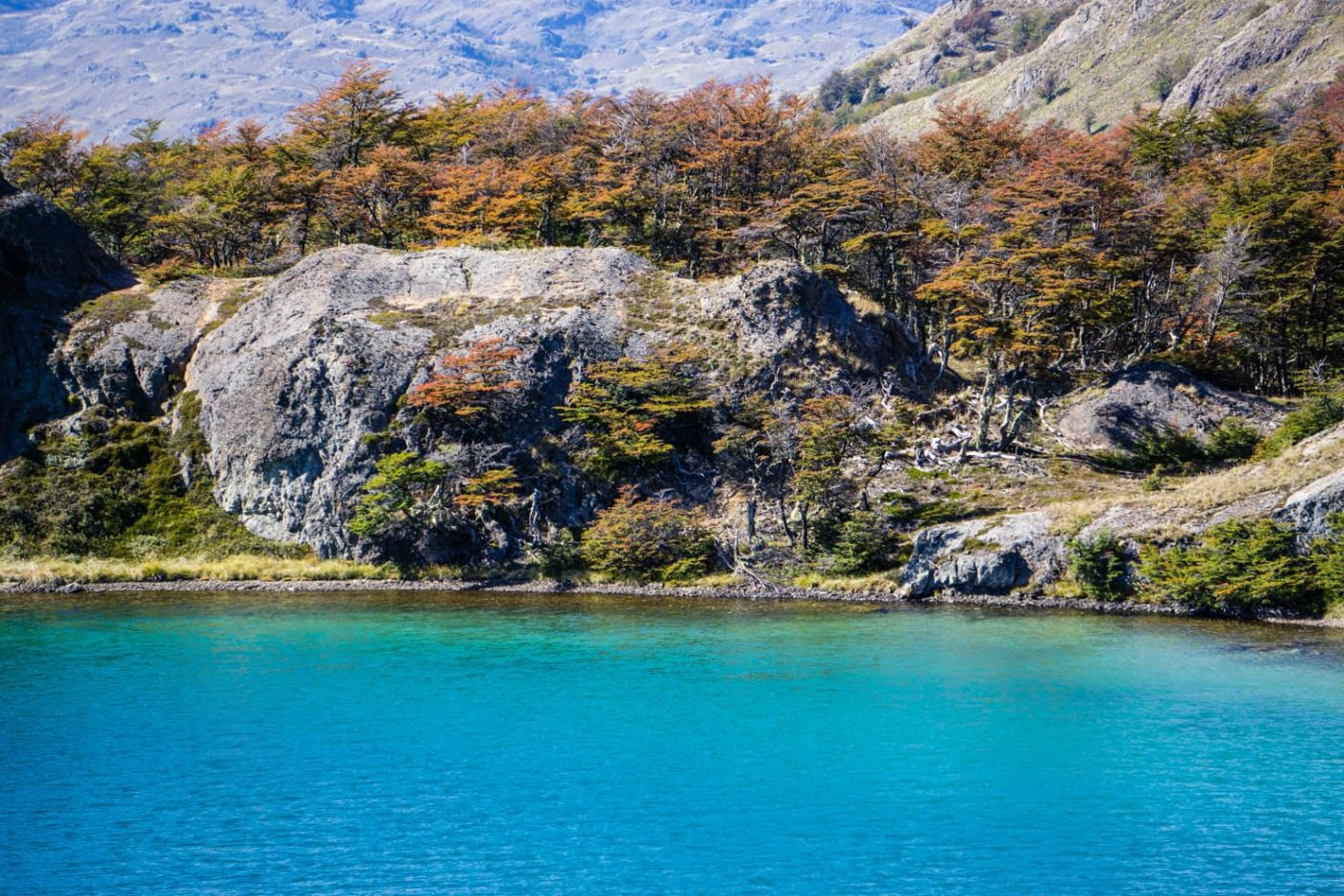 Patagonia National Park. Patagonia, Chile Contributed by Maya from Travel with a Smile