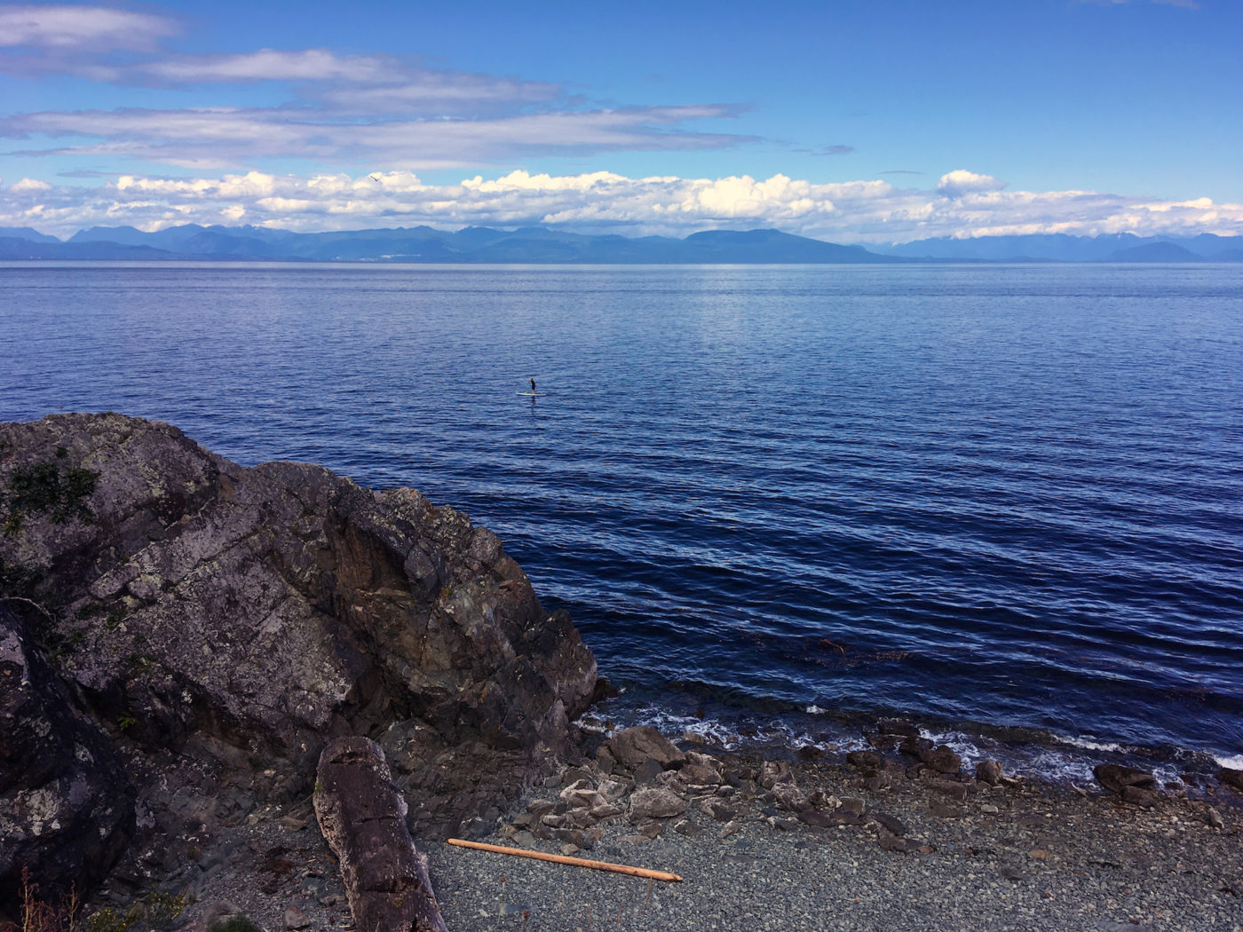 things to do in nanaimo