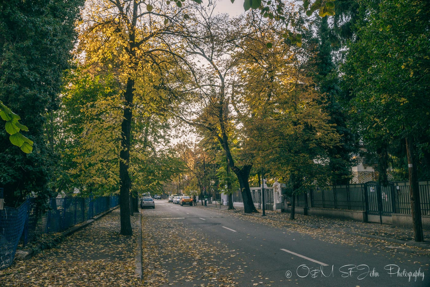 Bucharest in the fall.Romania
