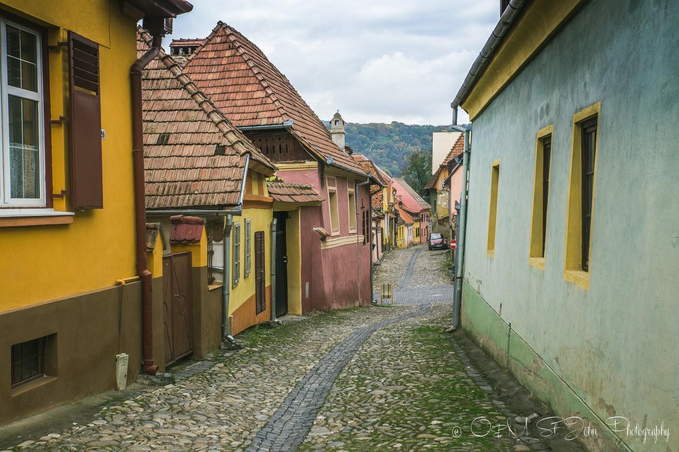 Romania Sighisoara-3974