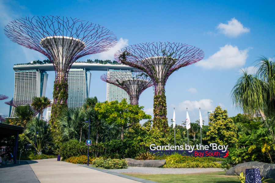 Sunday City Guides: What to do in Singapore